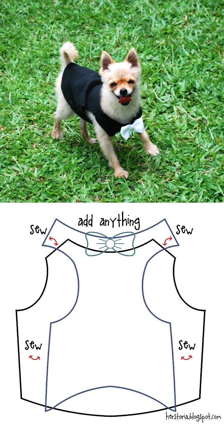 Top 10 Cute DIY Pet Clothes Jasper is getting old and shivers a lot, so I shall have to make her a nice warm one!