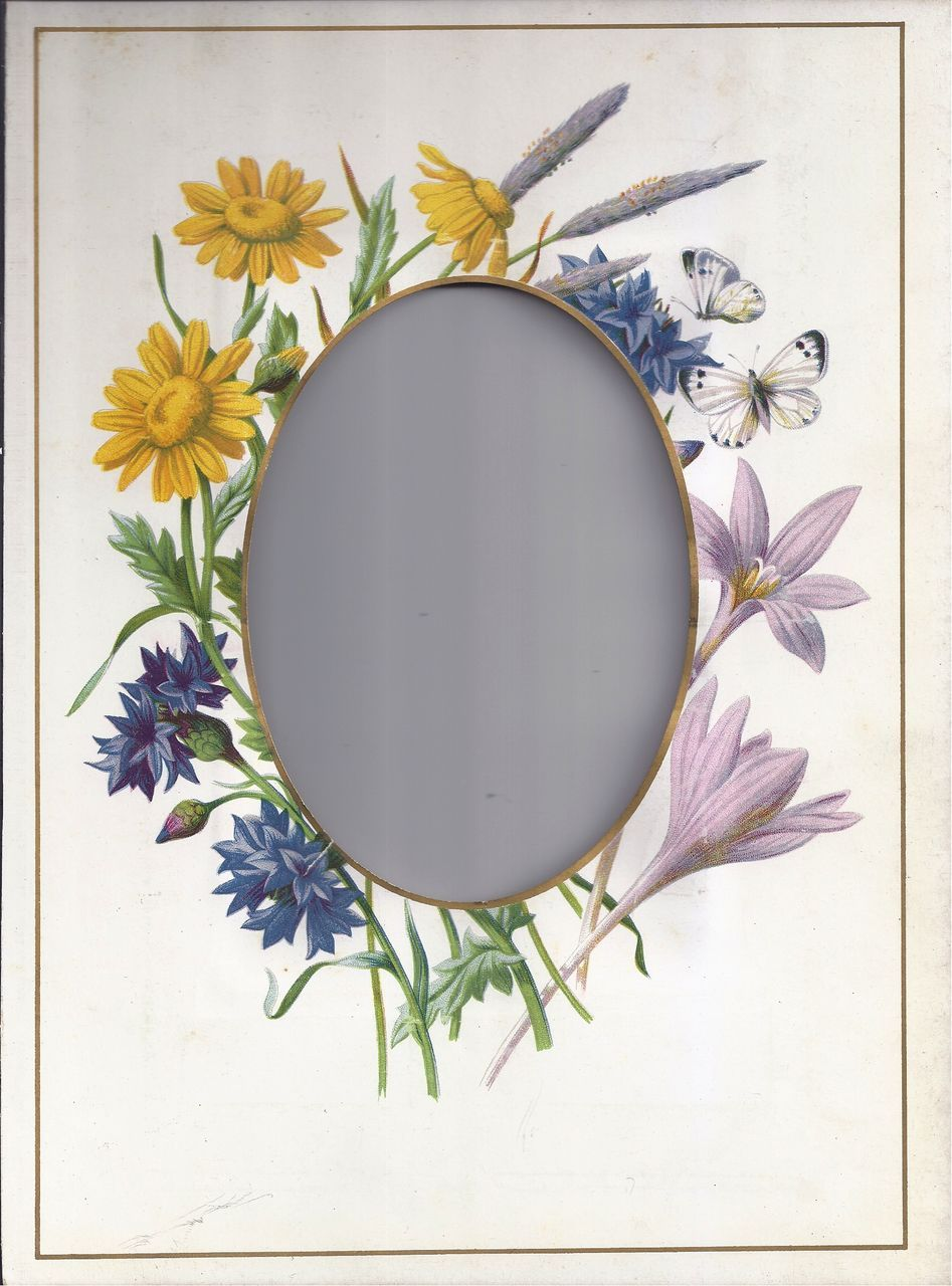 Lovely Mat Frame From Victorian Photo Album Cabinet Photo Size