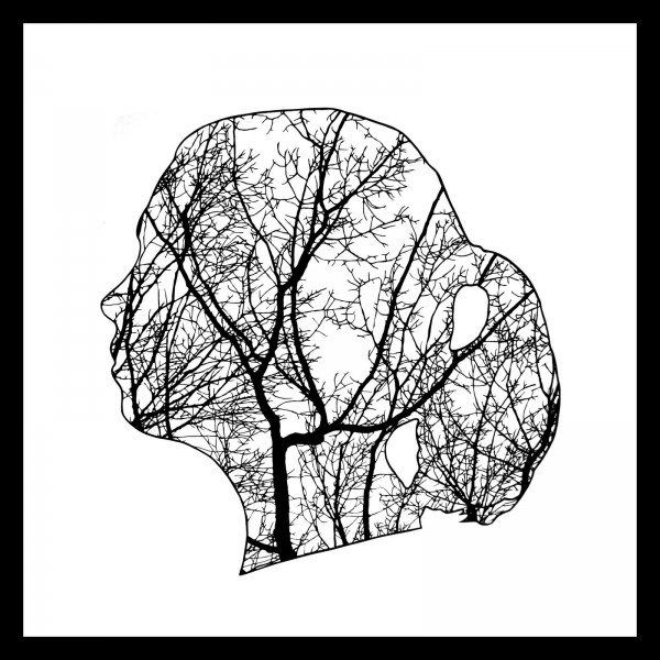 Papercuts by Joe Bagley - Pondly