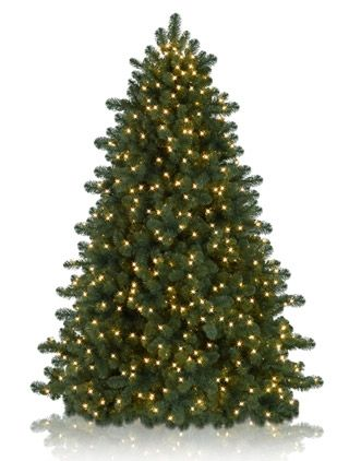 Our Balsam Hill Aberdeen Spruce artificial Christmas tree makes use of our  state-of-the-art Easy Plug setup to let you mount a holiday spectacle as ... - Our Balsam Hill Aberdeen Spruce Artificial Christmas Tree Makes Use