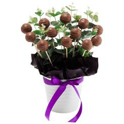 Cake pops make the world a better place and saying thank you with makes you an awsome person $85 Mud Cake Pop Bloom (12)