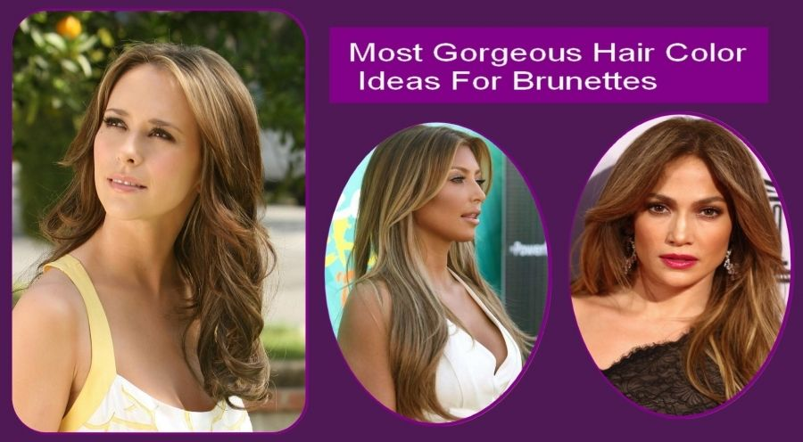 Hair Color Ideas For Going Gray Best Safe Hair Color Check More At