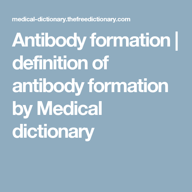 Antibody Formation | Definition Of Antibody Formation By Medical Dictionary