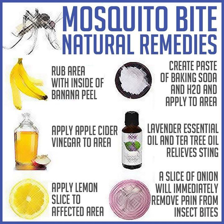 Mosquito bite remedies | Cancer prevention & healing through