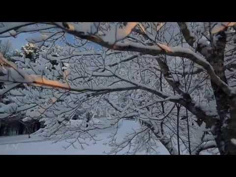 muzikalnie-kartinki-sviridova-k-povesti-pushkina-metel-pod-yubkoy-svadebnie-foto