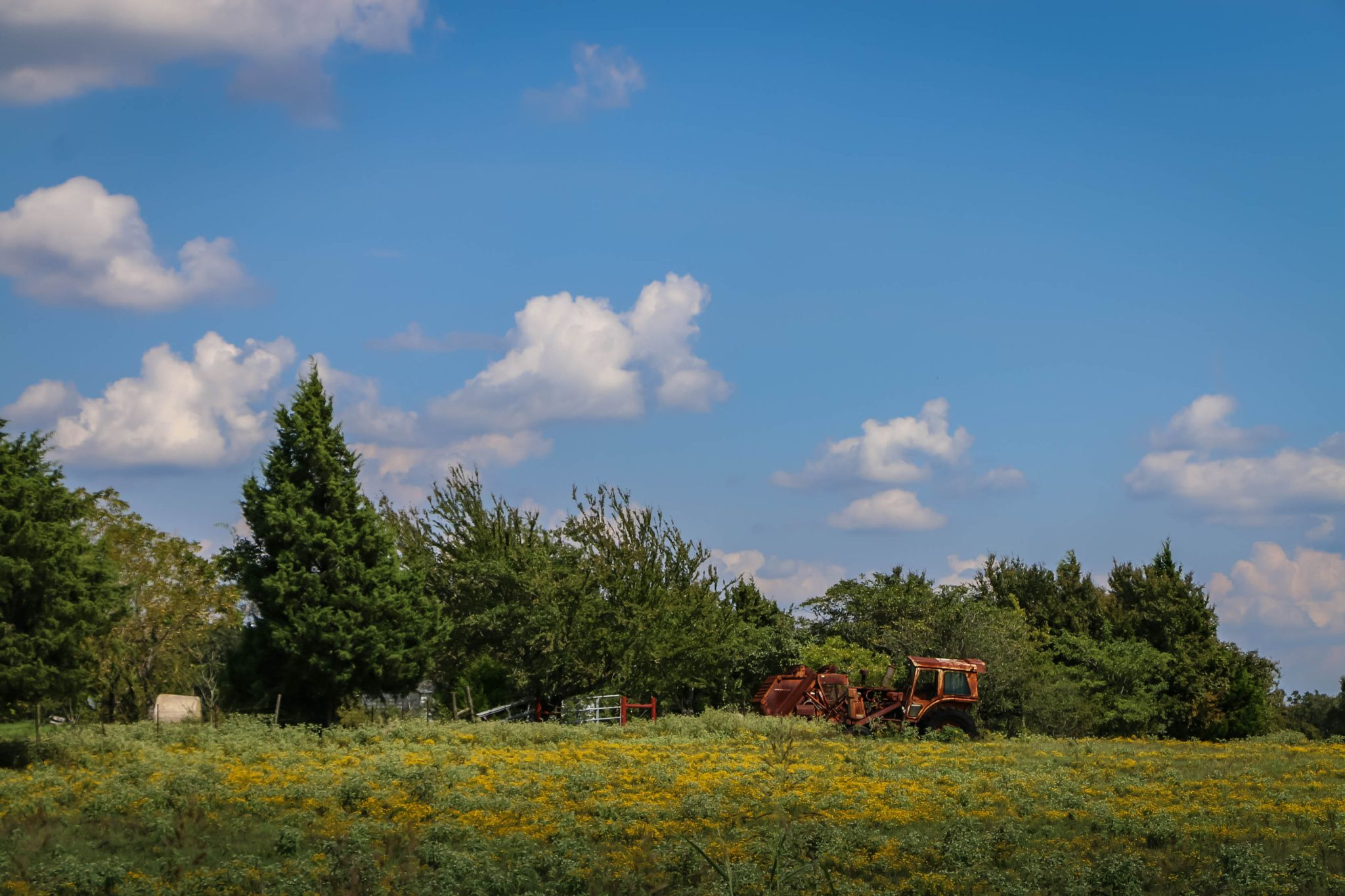 Rustic Tractor In Field Landscape View Of A Rustic Tractor In A