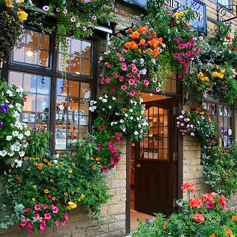 رمزيات بيبي طبيعه رمزيات Bb طبيعه بدون حقوق Flower Shop Gift Shop Beautiful Flowers