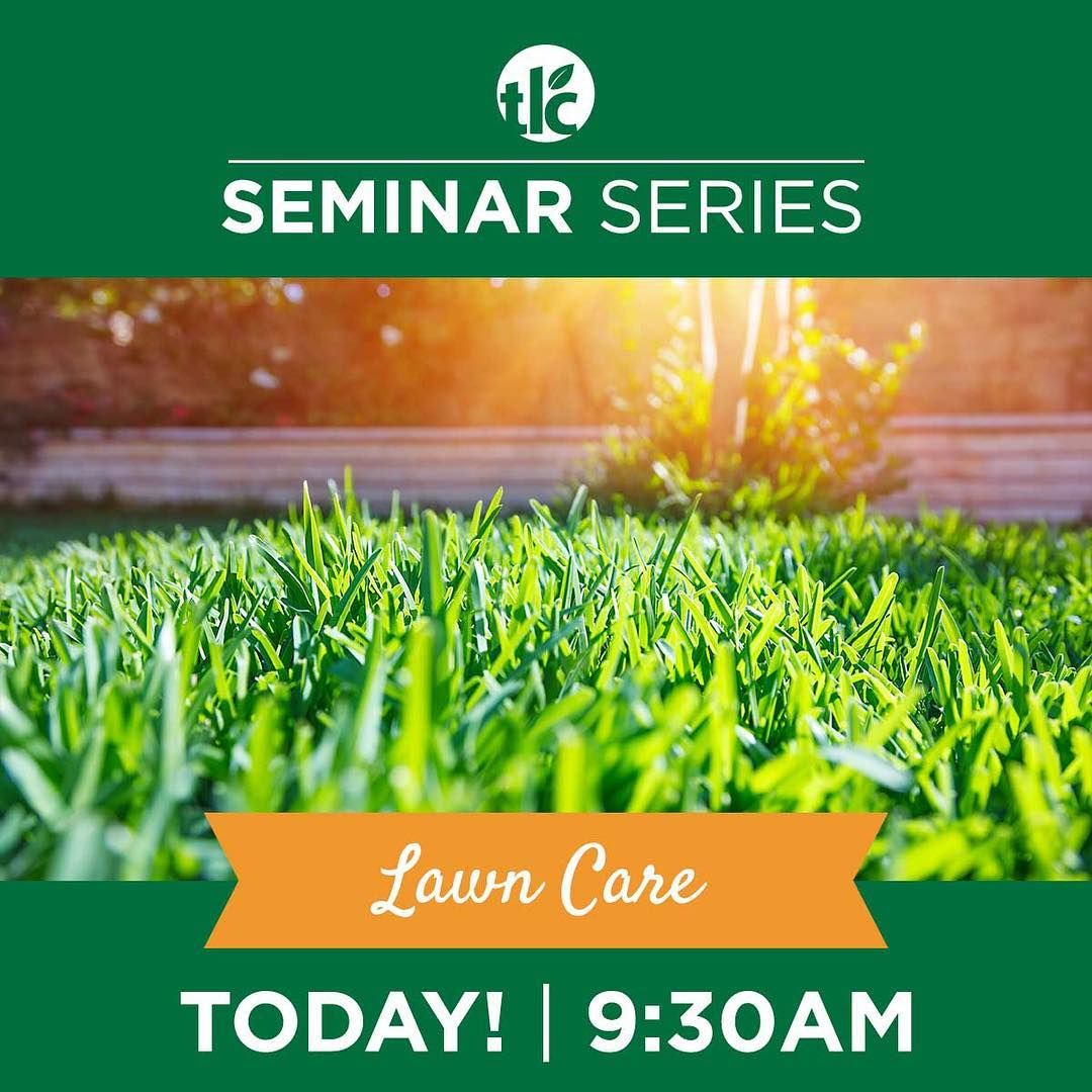 Today at am create a lush green and healthy lawn tlc seminar