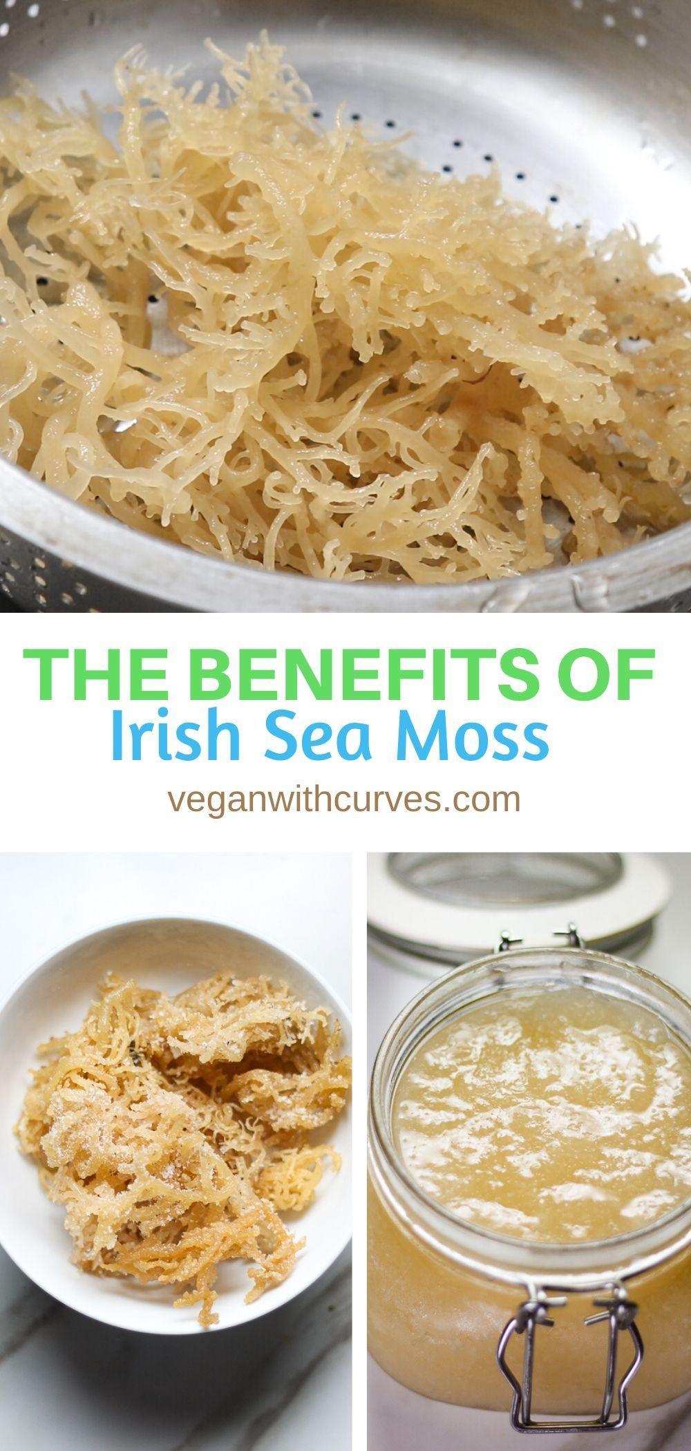 How To Make Sea Moss Gel Sea Moss Healthy Cooking Vegan Recipes