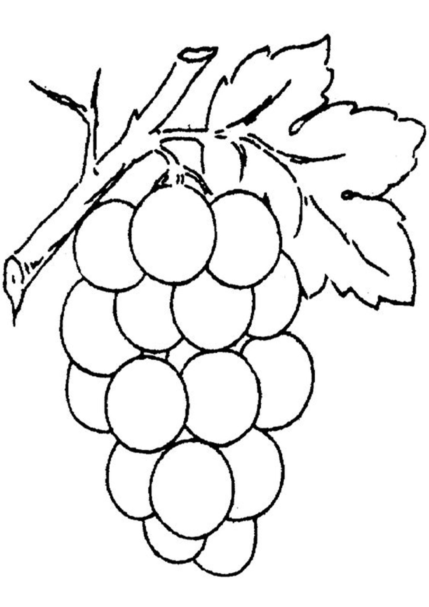Grapes Coloring Pages