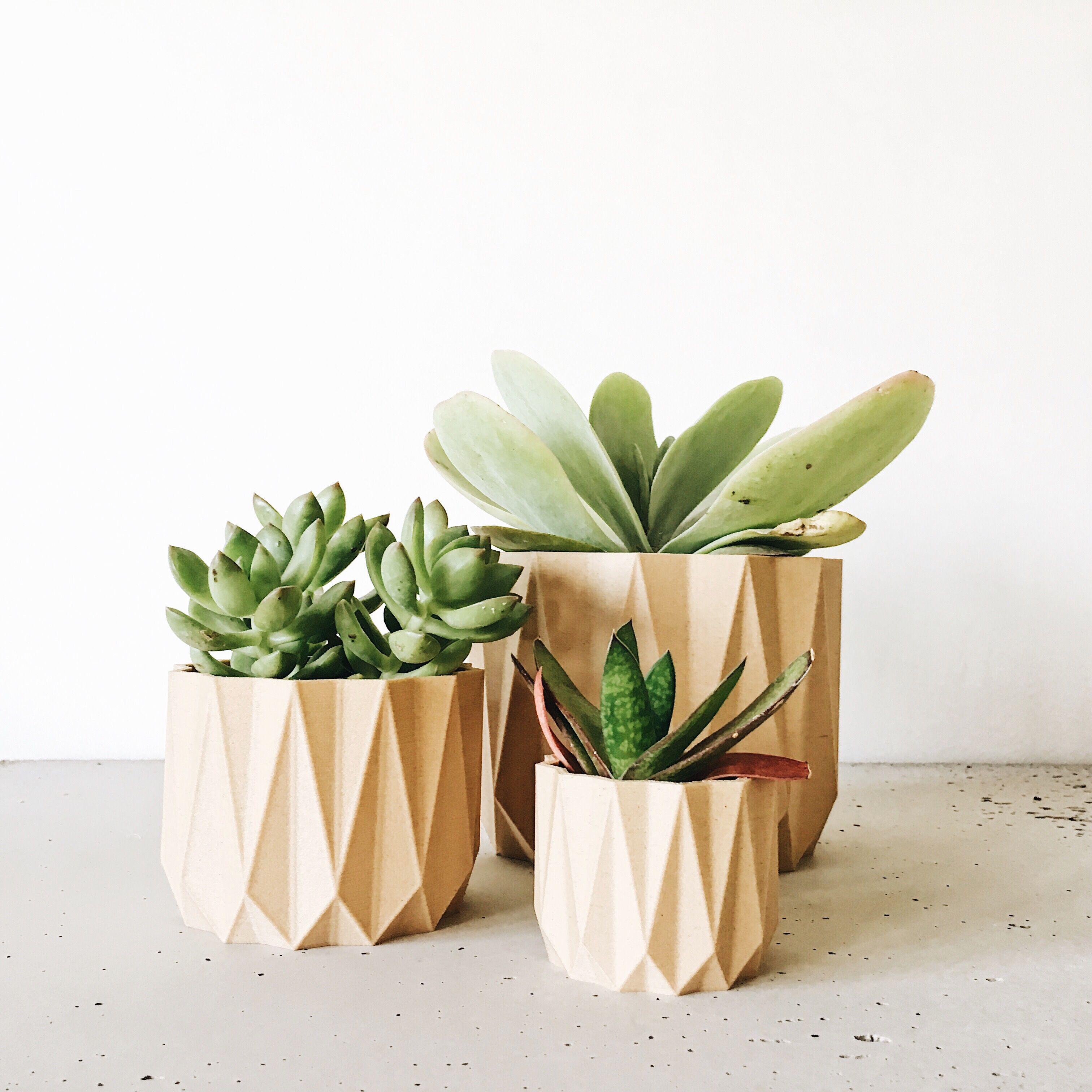 Indoor Wood Planter Origami Original Planter Gift Planter Gift