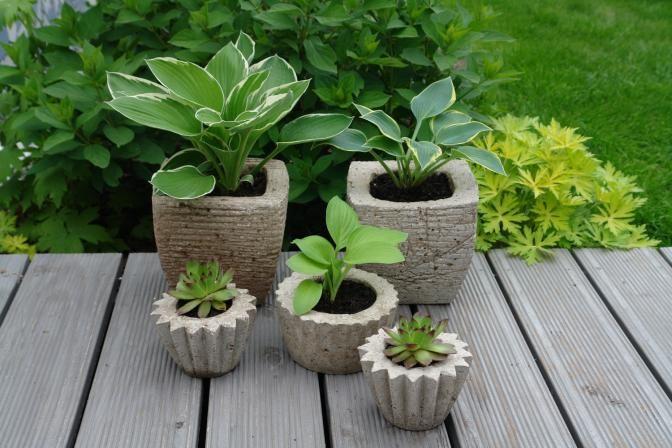 blumenbaum cement pinterest selbstgemachtes teilchen und einfach. Black Bedroom Furniture Sets. Home Design Ideas