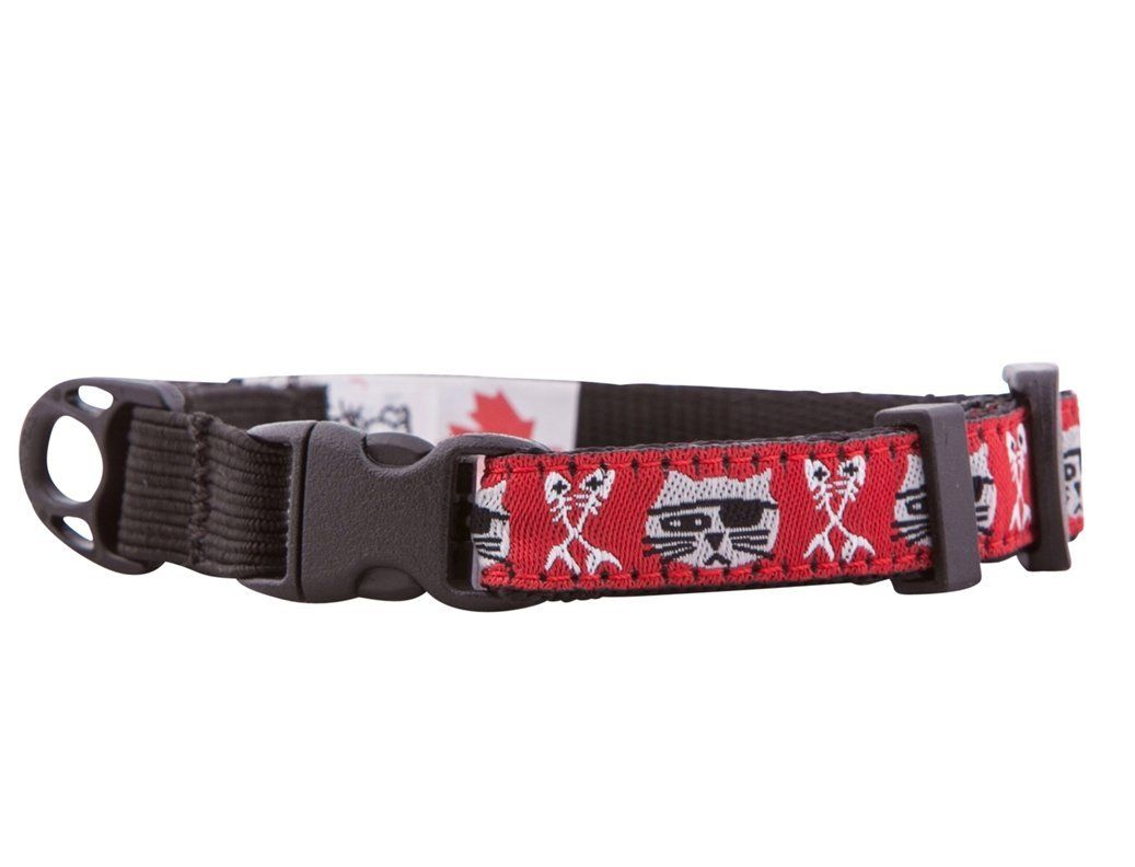 Rc Pet Products 1 2 Inch Kitty Clip Cat Collar 8 By 10 Inch To