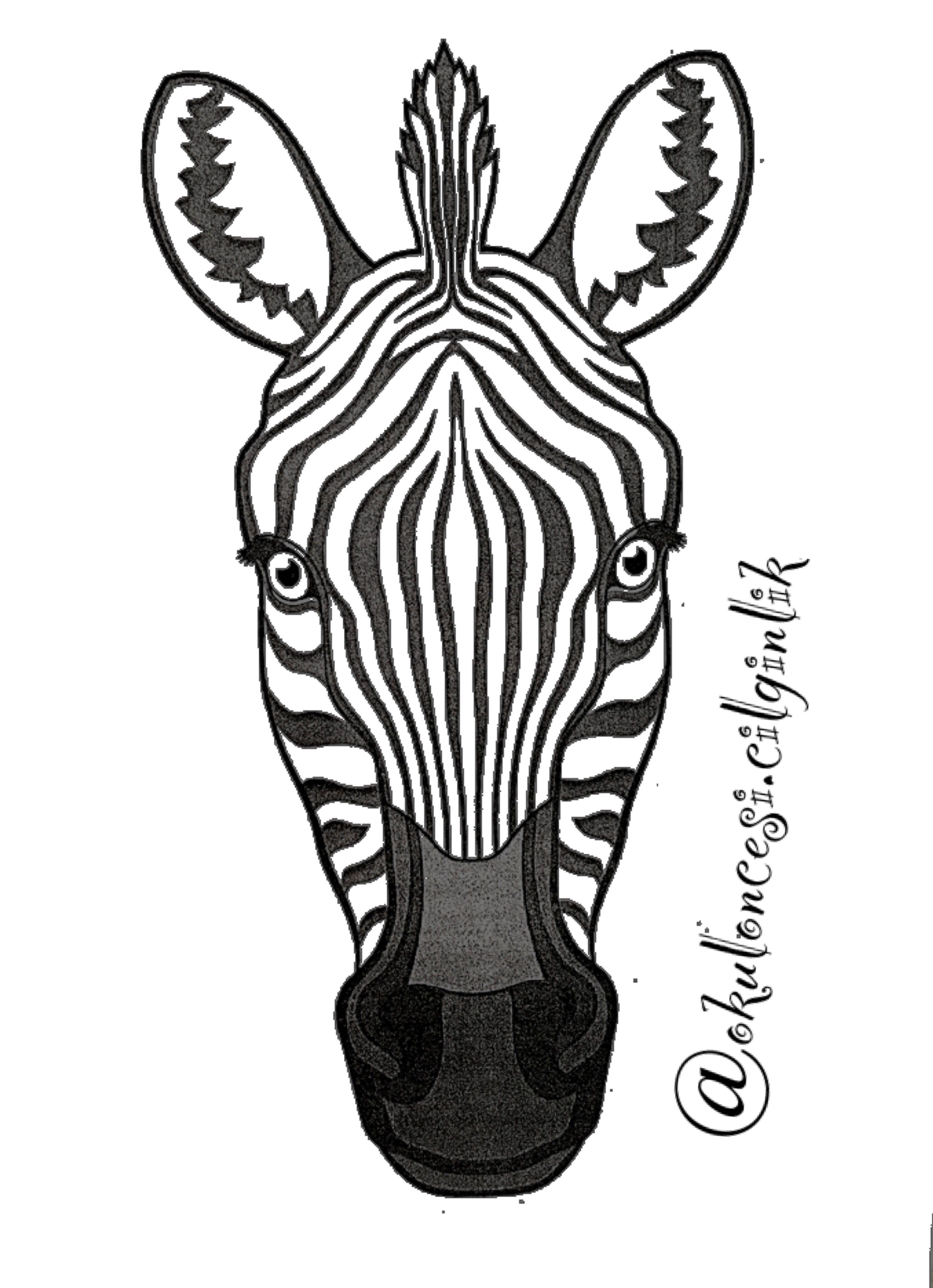 Basak Unluer Ozberk Adli Kullanicinin Zebra Panosundaki Pin 3d