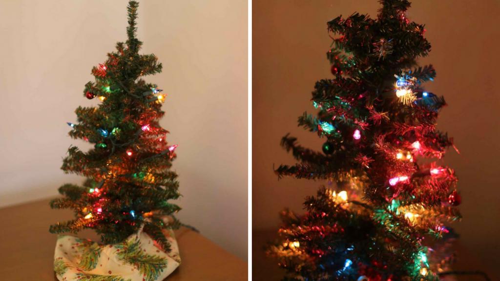 Lighting Up Tiny Trees Tiny Christmas Trees Tree Light Up