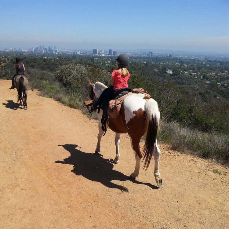 Best Places For Horseback Riding In Los Angeles Things To Do In La