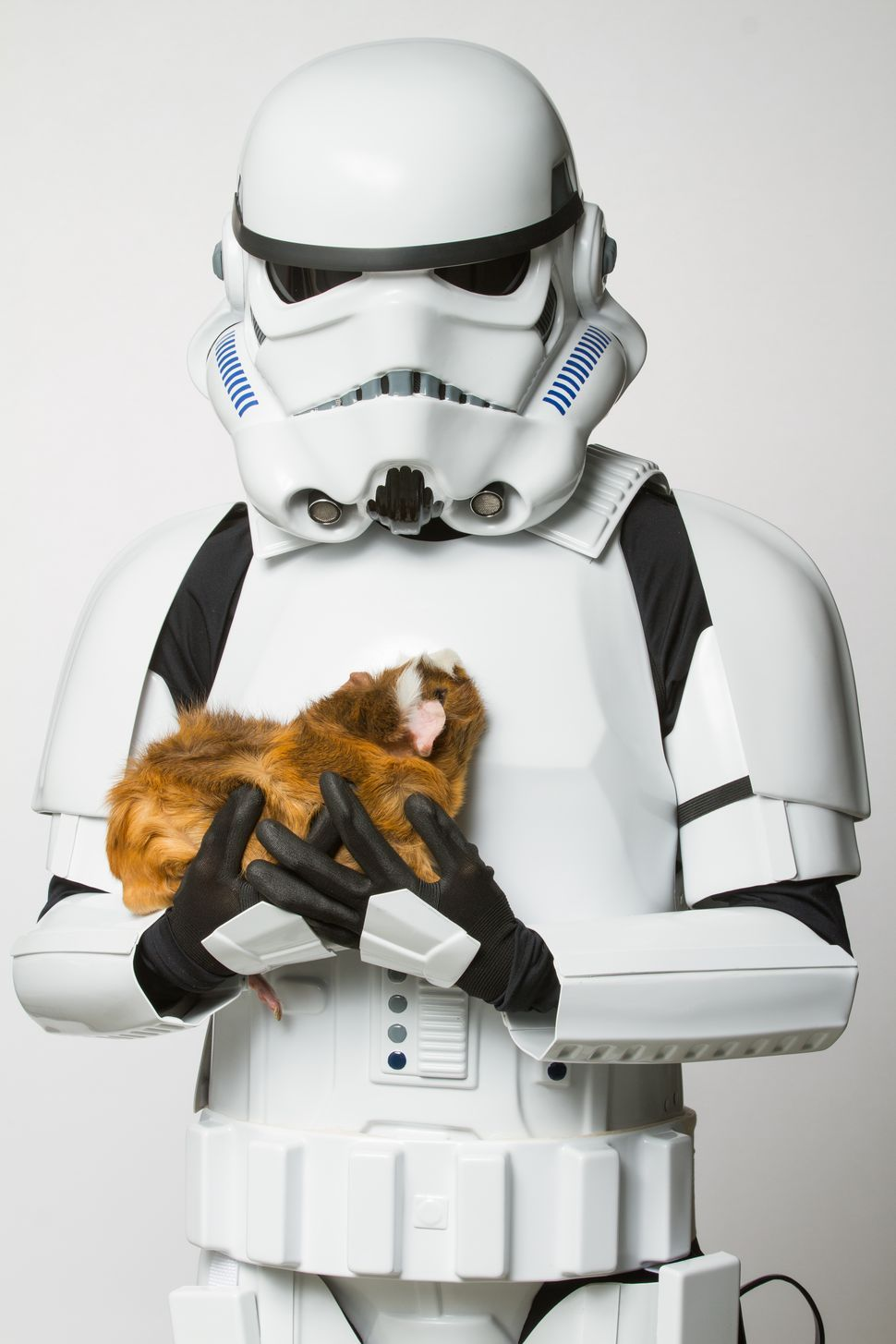 Stormtroopers with kittens? 'Star Wars' villains show their soft side