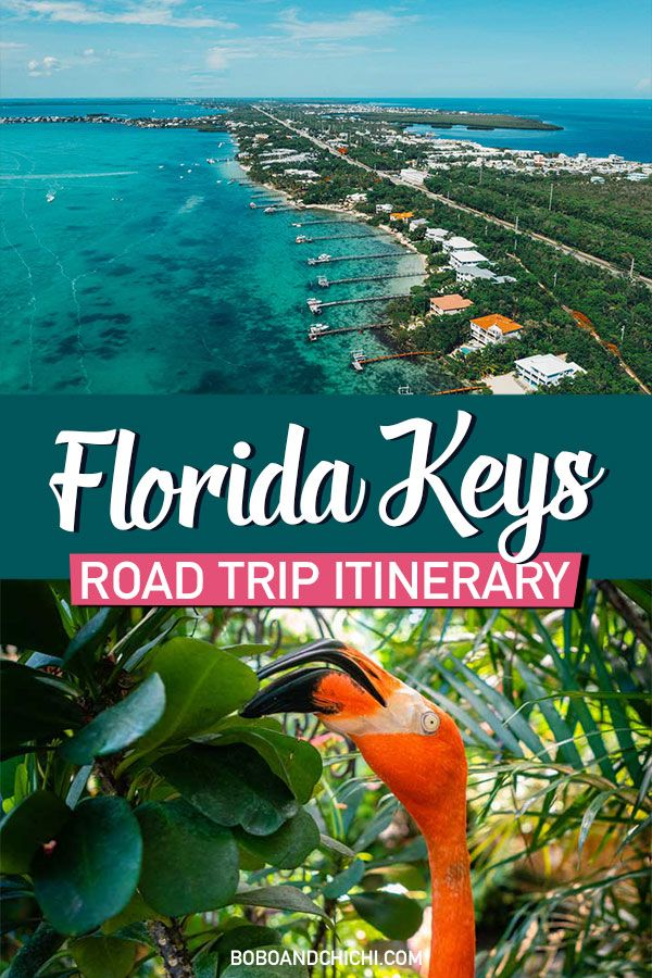 The Perfect 5 Day Florida Keys Road Trip Itinerary -   13 travel destinations Florida trips ideas