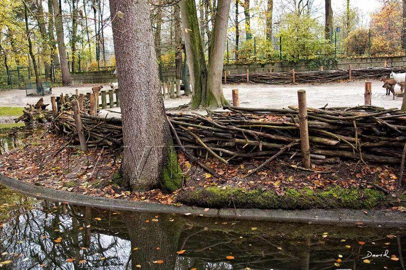 Gefullter Totholzzaun Nach Art Des Hauses Wildbienenschutz Im Naturgarten Naturgarten Garten Garten Design