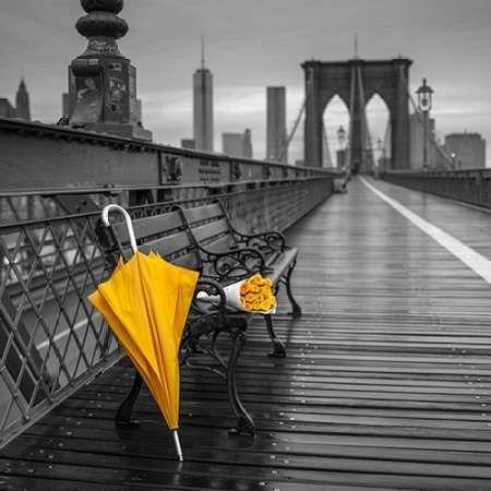 Yellow umbrella and bunch of roses on bench on pedestrian pathway, Brooklyn bridge, New York
