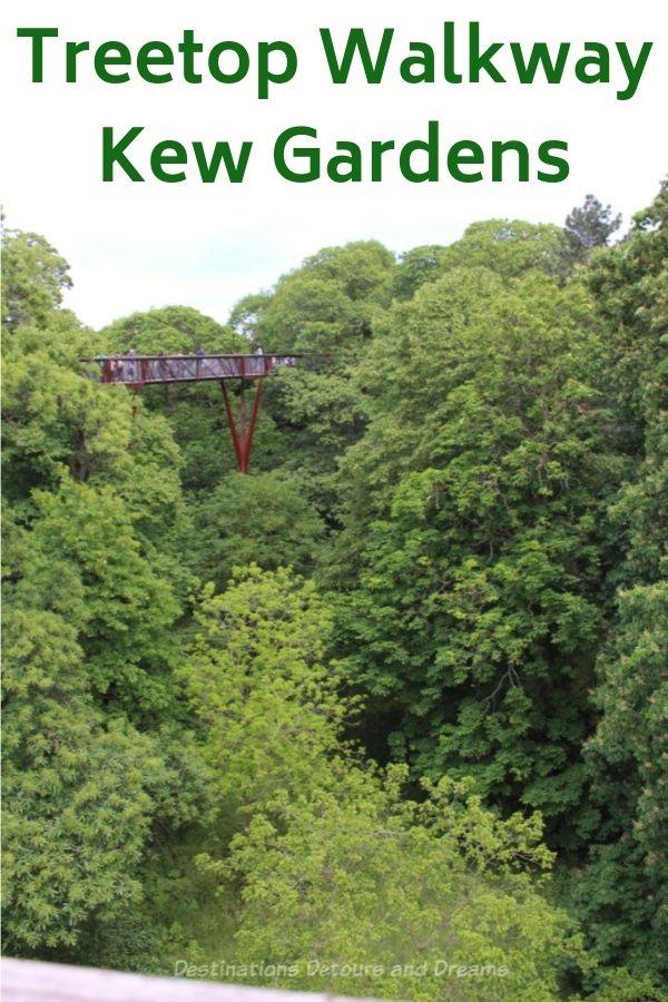 59766e8b3f4dc964cda0061d593fda49 - How High Is The Tree Top Walk At Kew Gardens