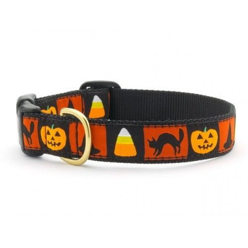 Trick or treat? Let your little dog be prepared for the Halloween night! Check http://www.chic4dog.com/collari-/halloween-collar-2059.html