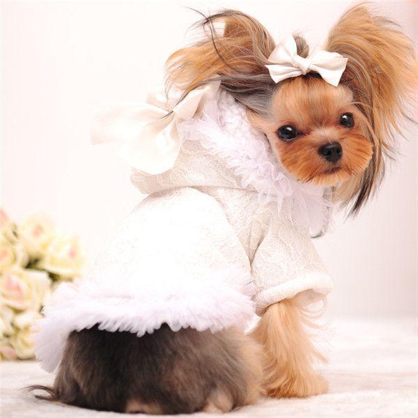 Mr Michael Girl Dog Clothes Winter Female Dog Coat Cute Lace