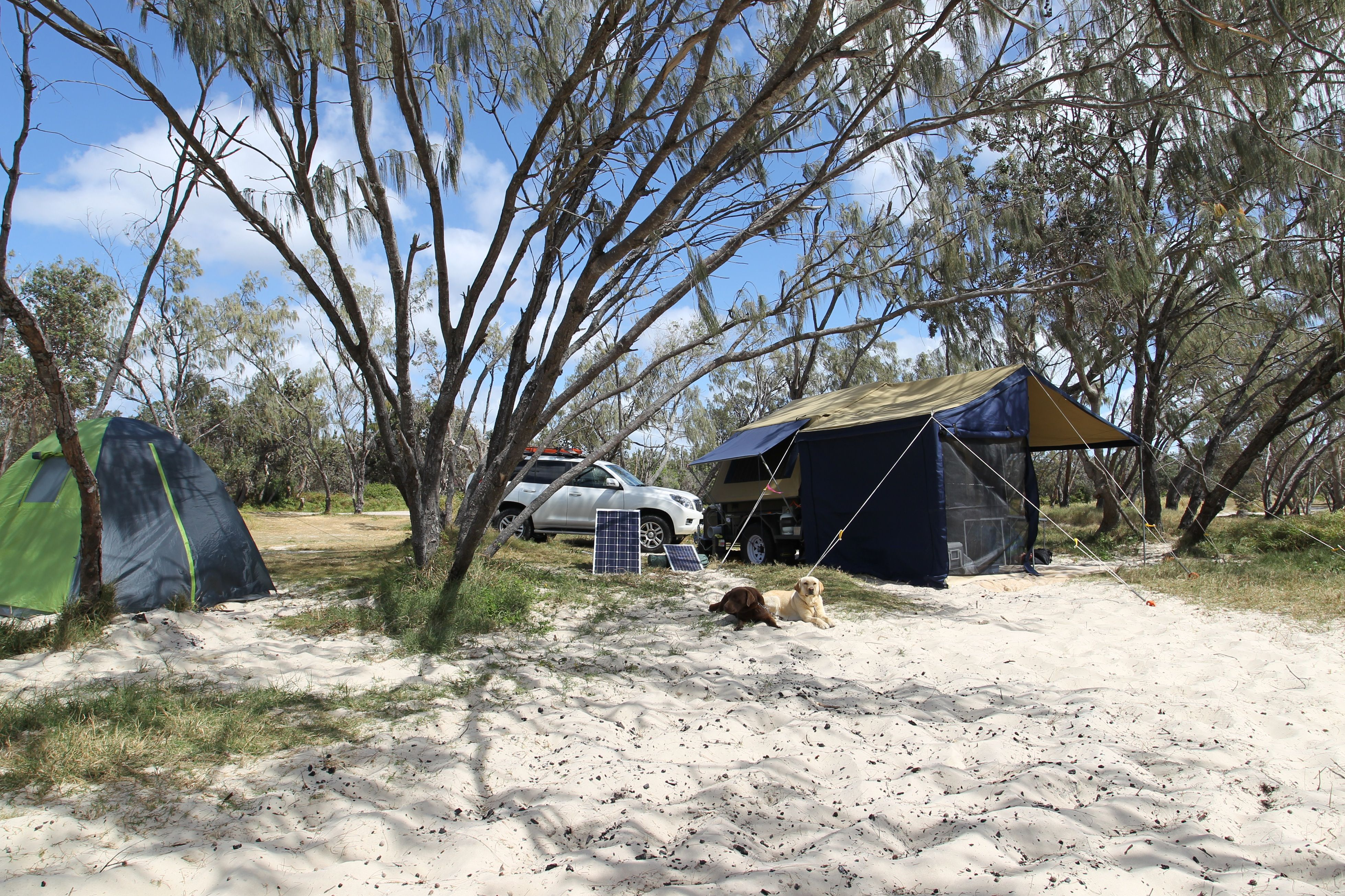 Campsites along Flinders Beach on North Stradbroke Island