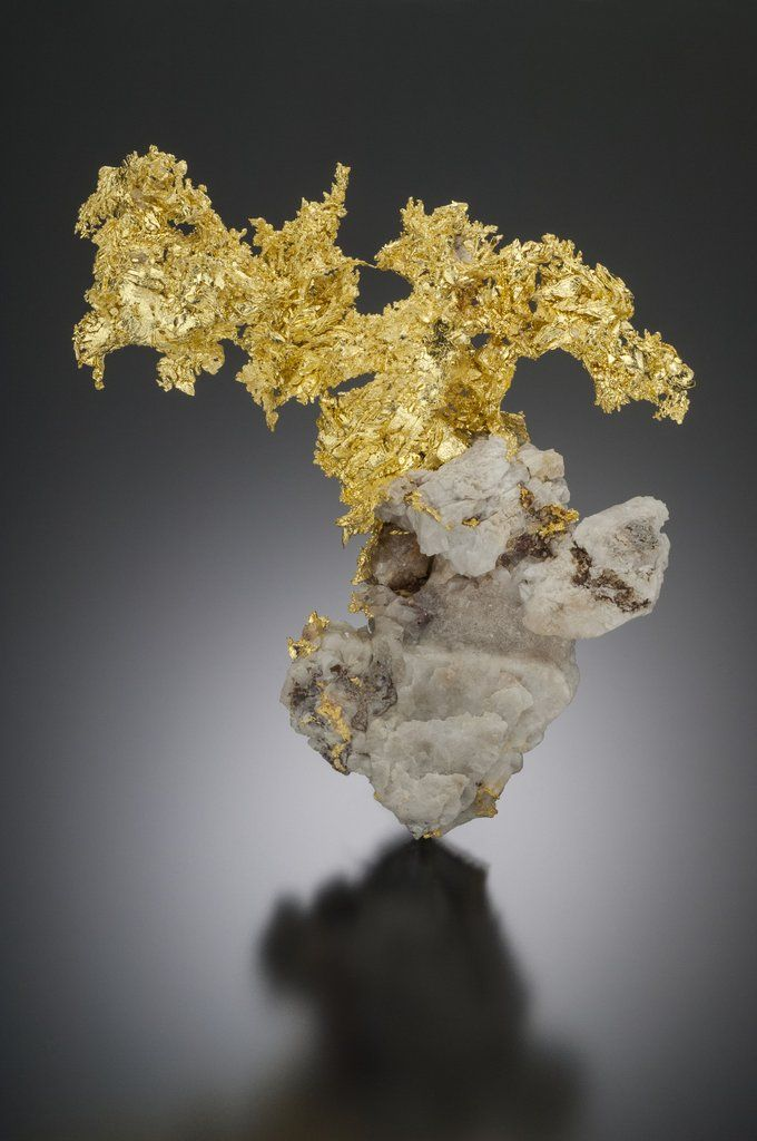 An exceptionally appealing matrix gold specimen from one of