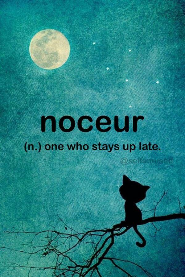 Night owl Weird words, Unusual words