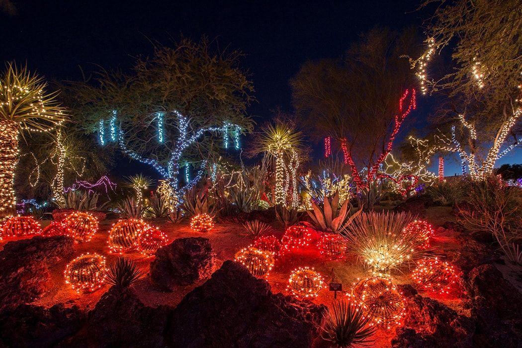 Las Vegas Ethel M Chocolates Botanical Cactus Garden Lighting Henderson