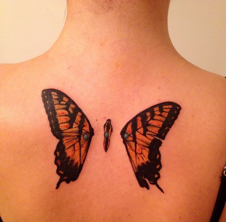 Photo of à moitié trahi: papillons aux ailes perforées tatouage paramore … – #