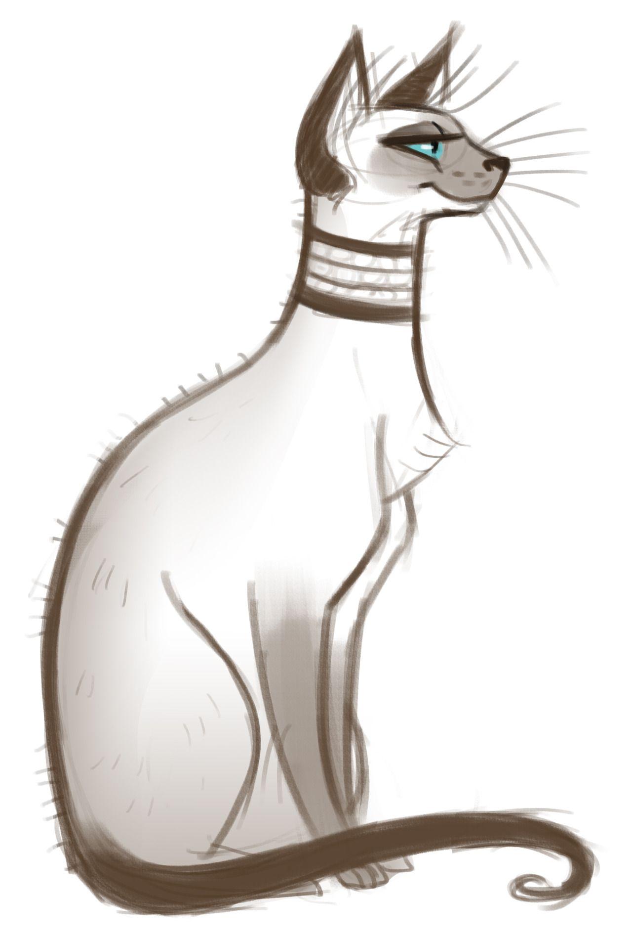 Картинка сиамской кошки для срисовки