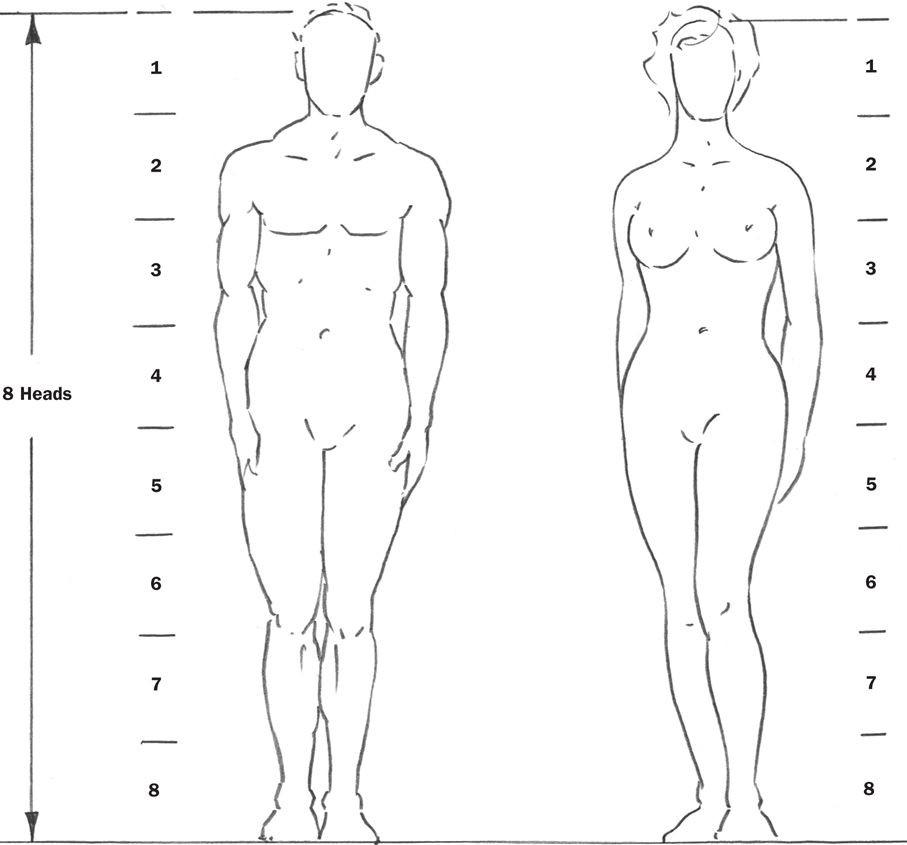 Image result for drawing body proportions | Drawing | Pinterest
