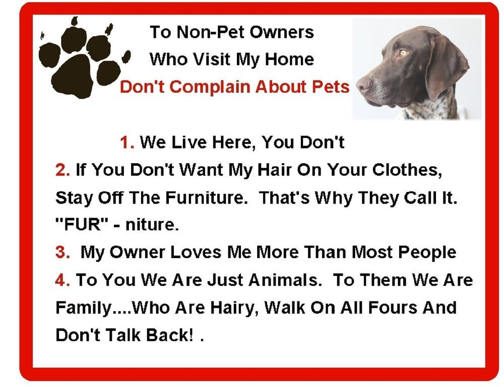 Funny German Short Hair Point House Rules Refrigerator Magnet Gift Card Insert Ebay Funny Dogs Refrigerator Magnets Black Pug Puppies