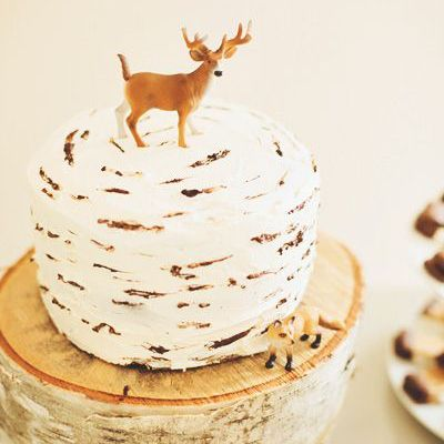 A WoodlandThemed First Birthday Party Birthdays Cake and