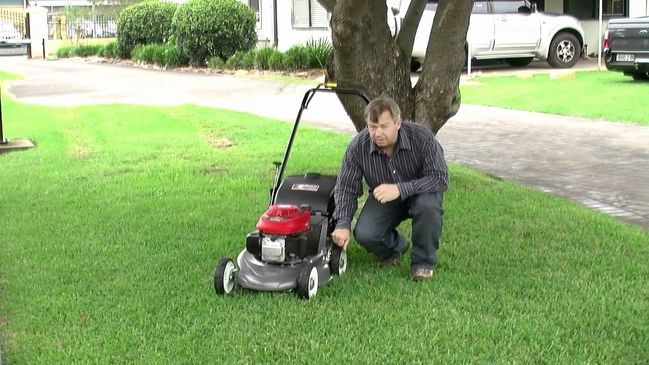 Lawn Mowing Glenthorne Fox Mowing Your Local Gardening