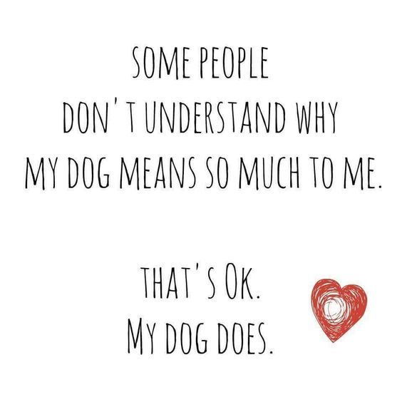 My dog does...