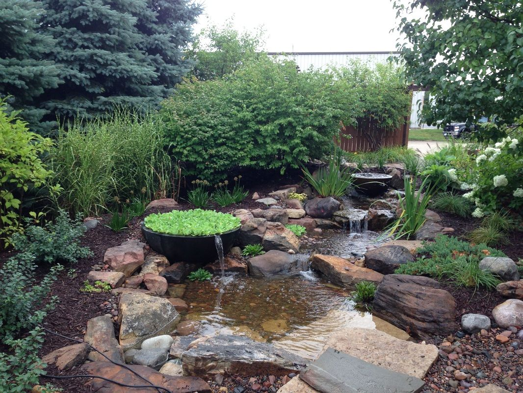 Water Feature (POND) Ideas For Your Back YardRochester