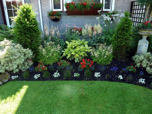 peonies landscaping ideas Aruncus Aethusifolius at either side of