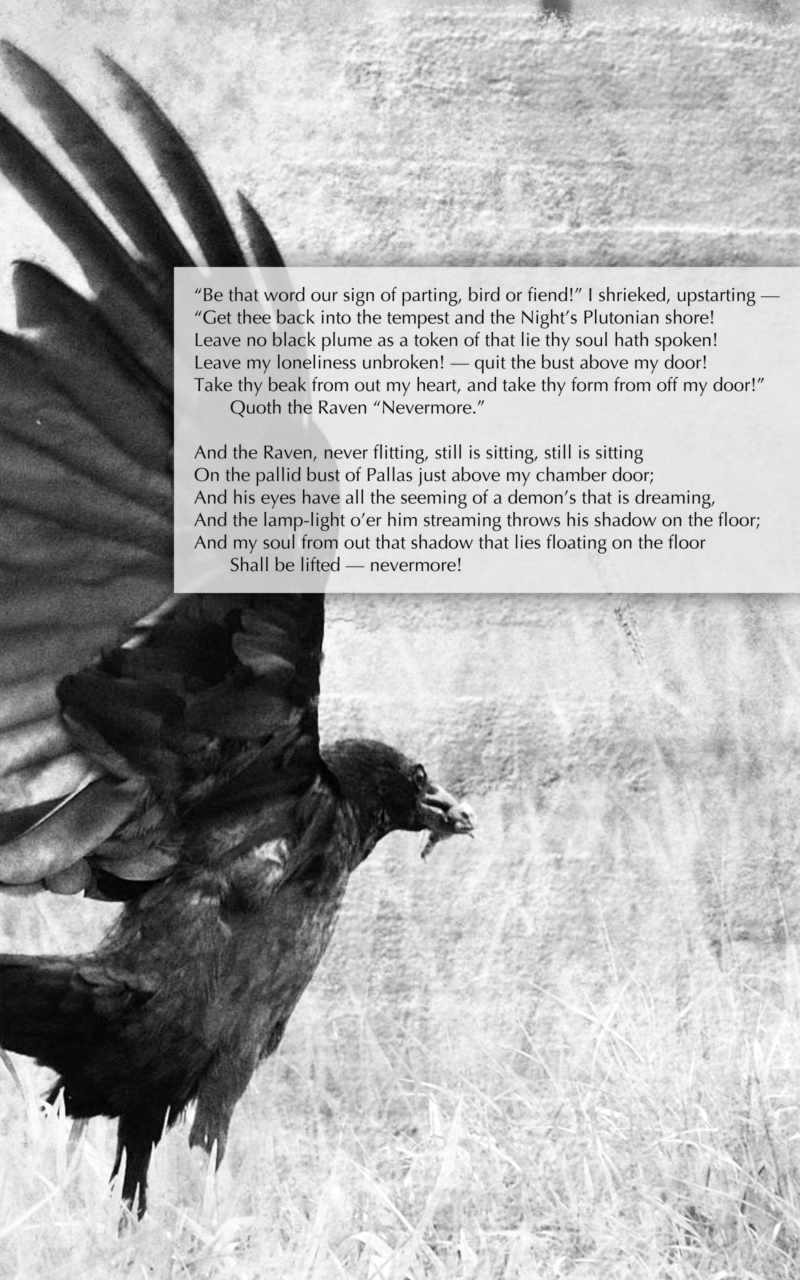 Chamber Door Poem Amp Edgar Allan Poech Paper Outline