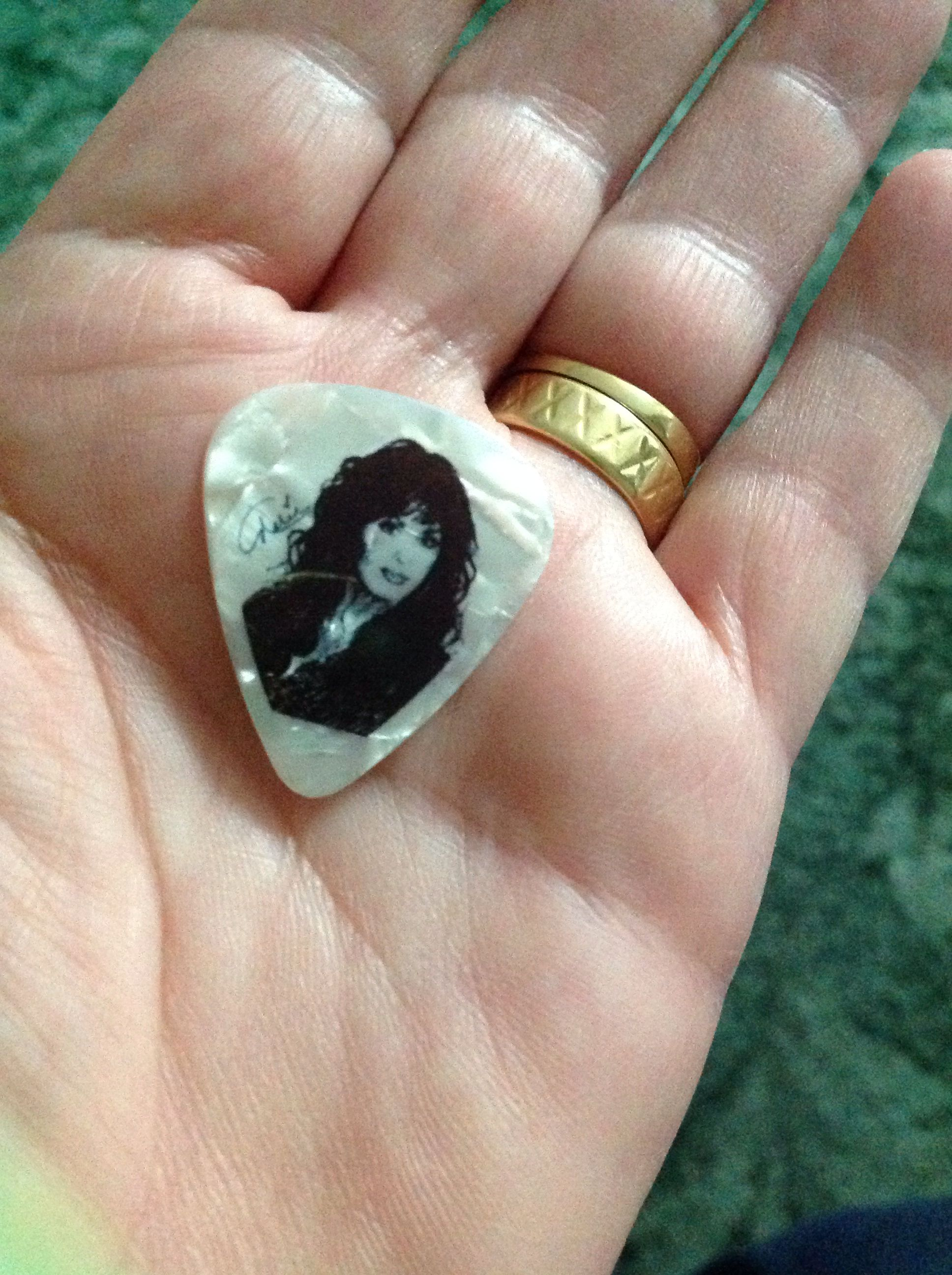 The plectrum (guitar pick) that Marie threw to me during The Donny ...