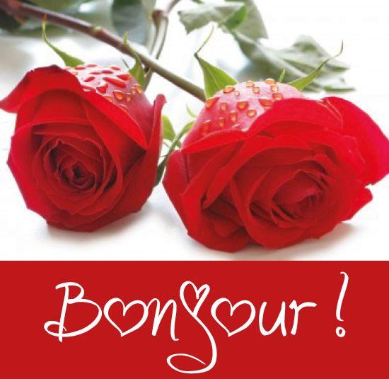 Bonjour Bonjour Roses Fleurs Bonjour Romantique Bonjour