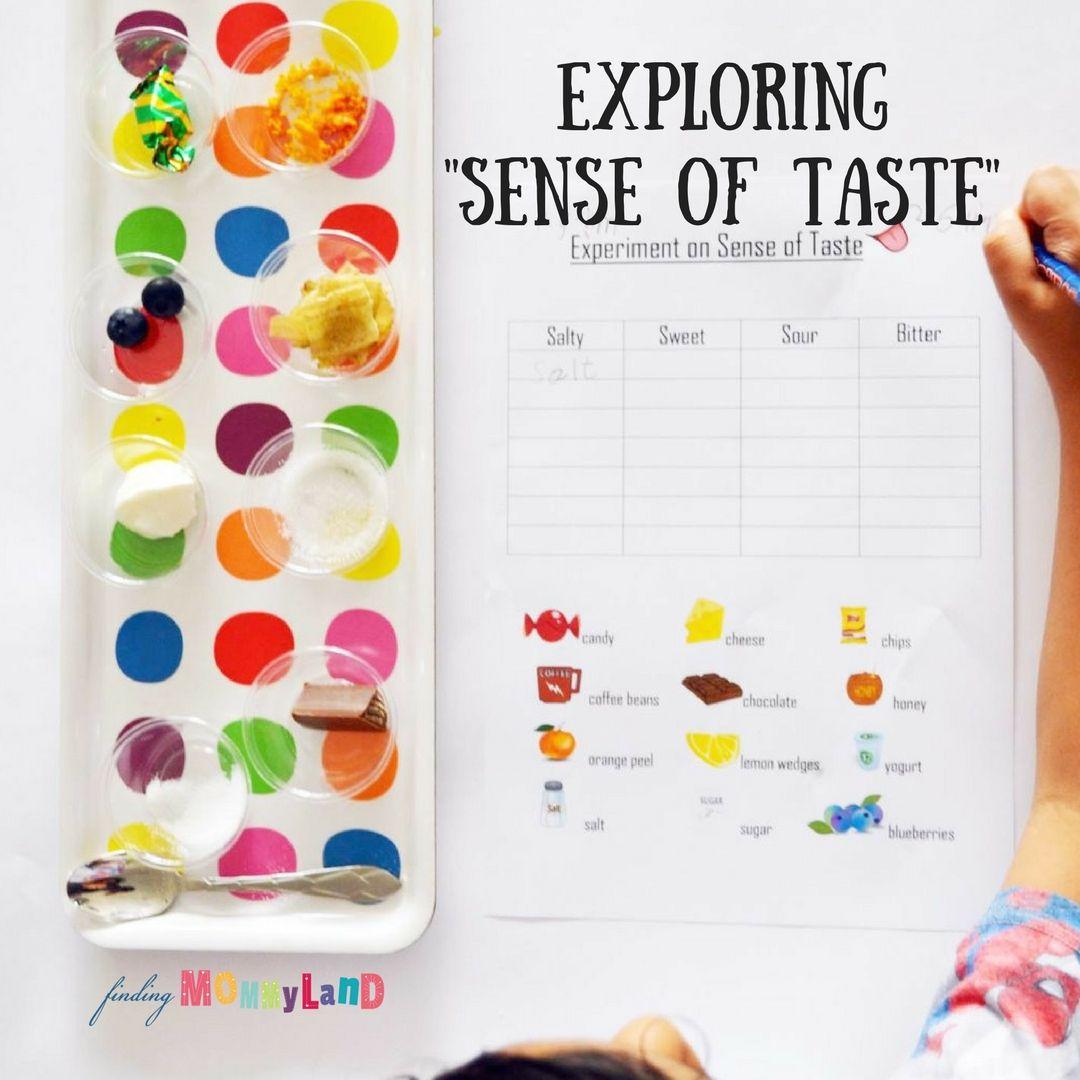 Exploring Sense Of Taste With Children Five Senses