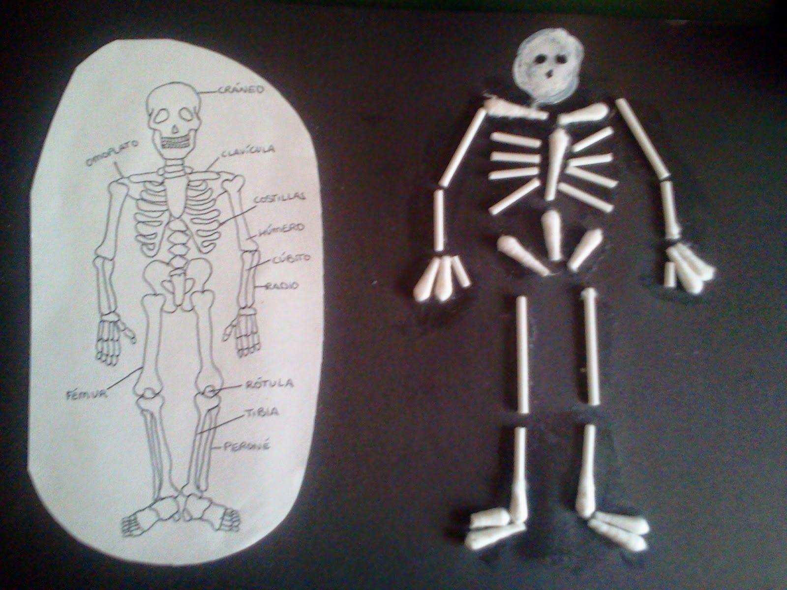 manualidad esqueleto humano hecho de bastoncillos de algodón | El ...