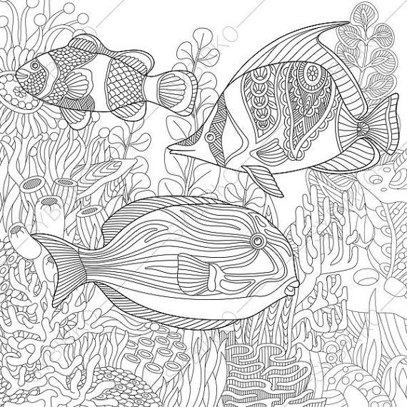Adult Coloring Page Tropical Fish By ColoringPageExpress On Etsy
