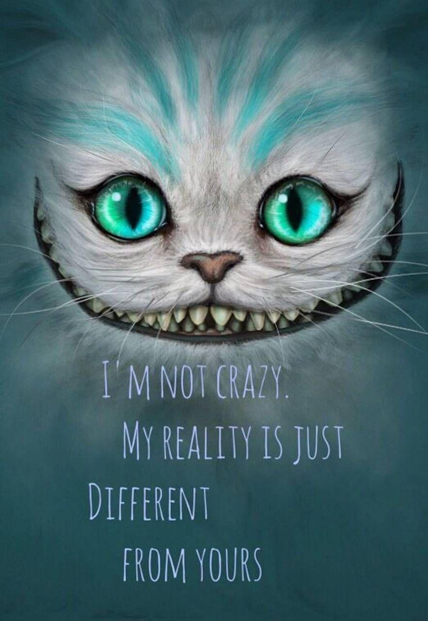 Treasure Cat wallpaper by MariMar94 - b7f3 - Free on ZEDGE™