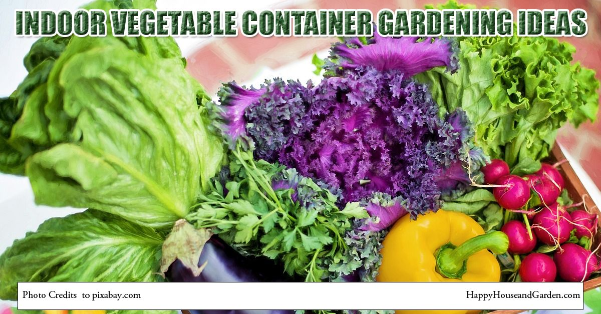 1000 images about indoor vegetable gardening on pinterest gardens container gardening and backyard vegetable gardens. Container Gardening Vegetables Ideas