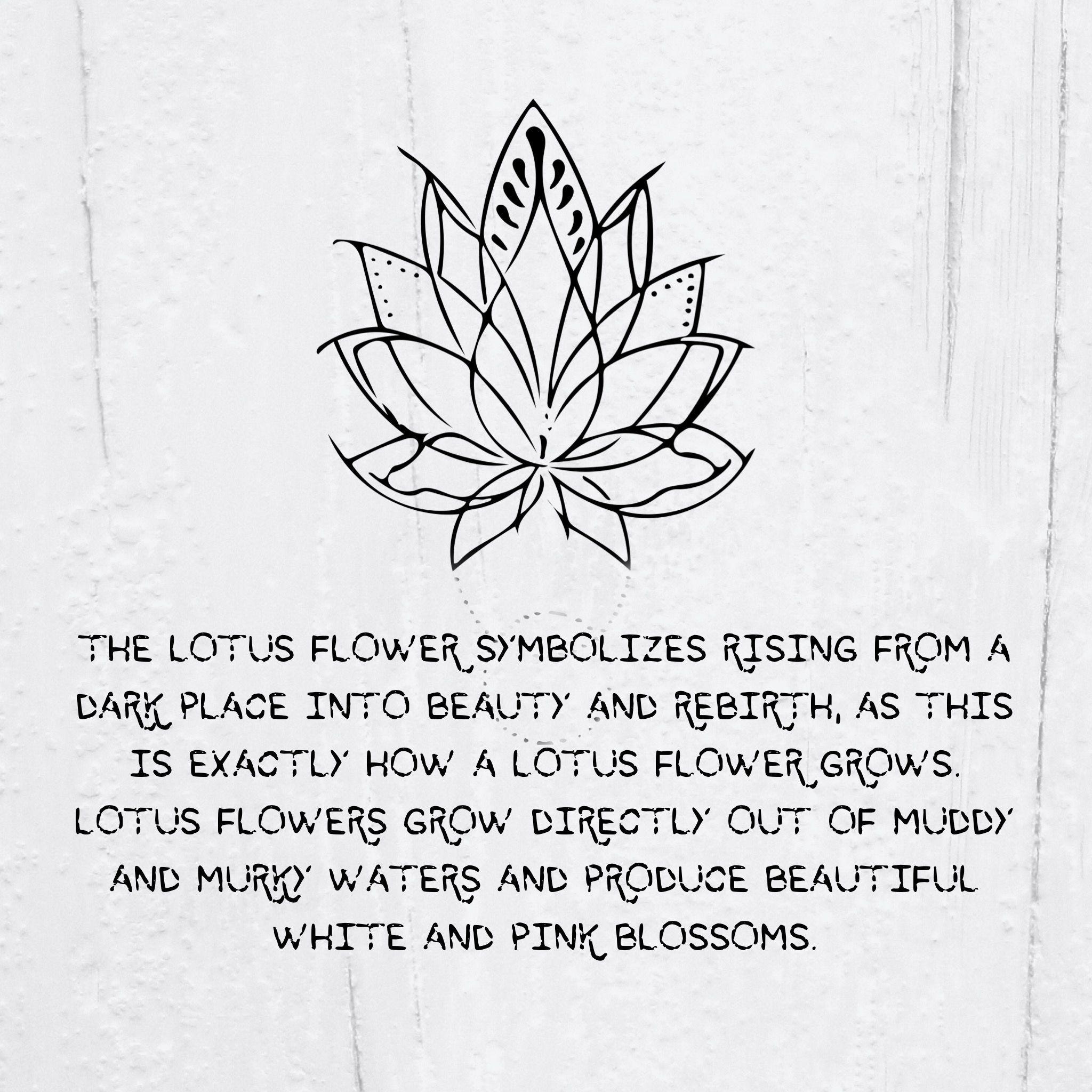 Pin By Tasha Adams On Feeling Flower Tattoo Meanings Lotus Flower Tattoo Meaning Tattoos With Meaning