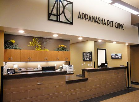People S Choice Veterinary Hospital Appanasha Pet Clinic In Menasha Wis Hospital Design Dvm360 Hospital Design Veterinary Hospital Hospital Interior